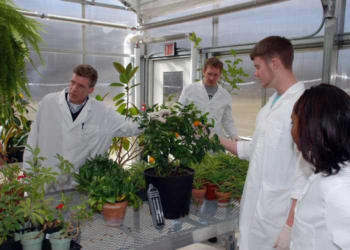 students uin the greenhouse